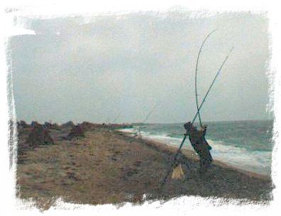 strand-altenteil-auf-fehmarn-2