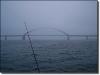 Fehmarnsundbrücke im Nebel