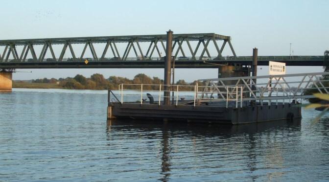 Aalangeln an der Elbe - Foto (C) MaBoXer