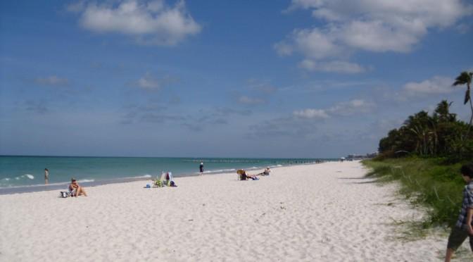 Florida (C) Susanne Bockelmann