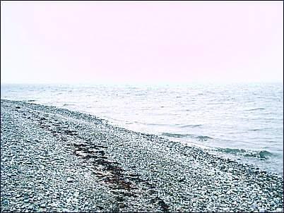 Angeln am Strand von Niobe auf Fehmarn
