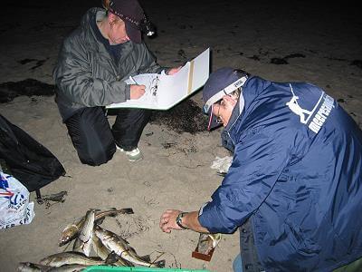 Claudia und Marco vermessen meine Fische