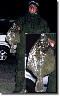plattfische-enrico-voges