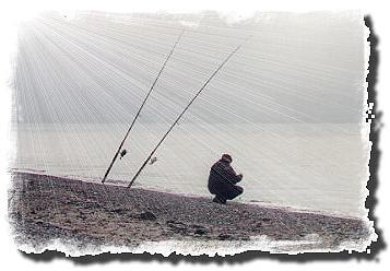 Bodo beim beködern © Foto M.B. ©2000 Marco Bockelmann