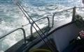 charterboot-ausfahrt
