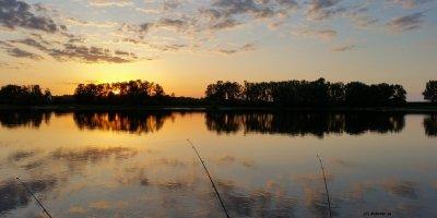 Einen Wels in der Elbe fangen