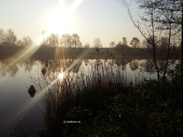 Anangeln 2019 Sonnenaufgang (C) MaBoXer.de