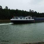 Angeln am Elbe-Seiten-Kanal (C) MaBoXer.de