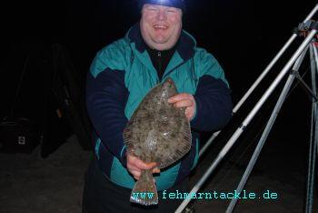 Plattfische aus dem Fehmarnsund