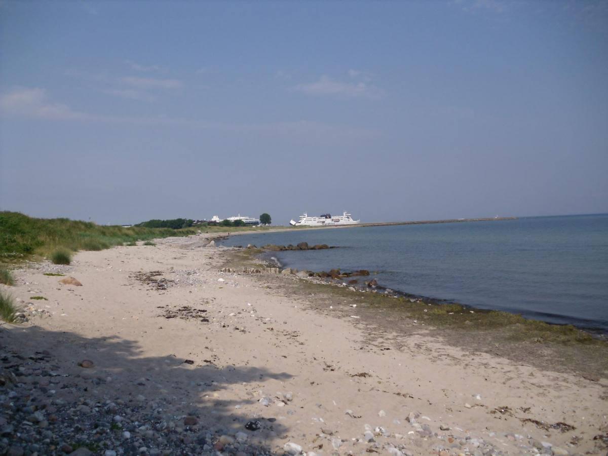 Ratgeber Küstenangeln