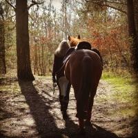 Lisa mit Pferd (C) Lisa B.
