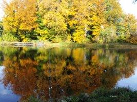 Teich 1 Herbstwald (C) MaBoXer
