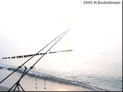Bissanzeiger für das Plattfischeangeln (C) MaBoXer