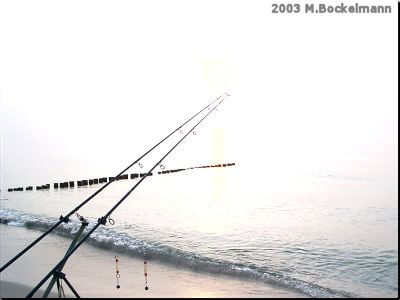 DAV MV Landesvergleichsangeln 2003