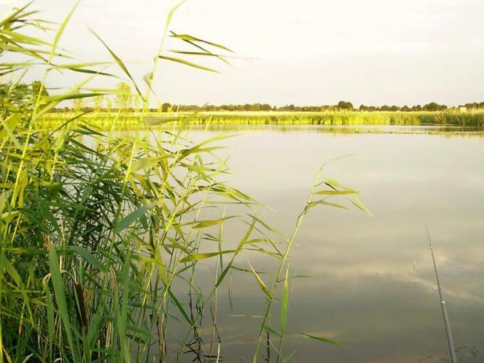 Besitzer-See-in-Mecklenburg-Vorpommern
