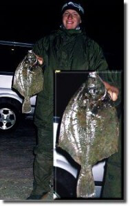Plattfische (C) Enrico