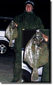 Fangfotos von Plattfischen