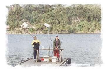 Trysnes Mariner in Südnorwegen 2001